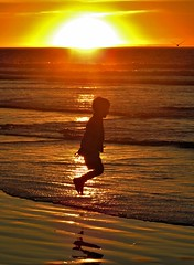 jump for joy (moonjazz) Tags: joy boy child beach california nostalgia silhouette sun ocean perfect memories family bliss happiness photo sandiego wonder excited airborne leap play people treasure water waves golden pure nature pacificocean wow