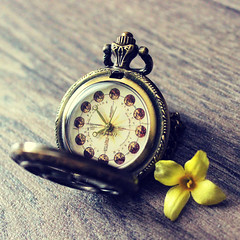 The Fastest and Slowest Clock in the World (JuliSonne) Tags: time clock timetravel pocketwatch hand compass season spring summer autumn winter
