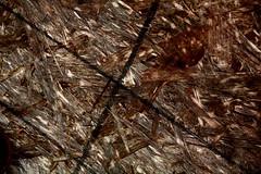 Intersected (Noel C. Hankamer) Tags: lines mdf plywood board minimal wood marks