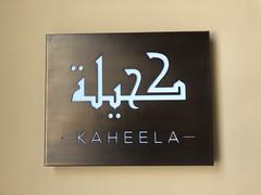 The Ritz Carlton, Ras Al Khaimah, Al wadai desert 52 (Travel Dave UK) Tags: theritzcarlton rasalkhaimah alwadaidesert