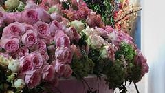 Blooming Bathtub (Theen ...) Tags: roses melbourneflowershow bathtub hydrangeas pink green theen display