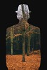 See right through me (AlistairBeavis) Tags: renemagritte inspired silhouette surreal art photoshop nature trees 52weeks