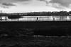 PHOENIX-SEE (Rainer ❏) Tags: phoenixsee dortmund hörde ruhrgebiet ruhrpott kalt cold contrejourshot gegenlicht sw bw bn x100f rainer❏