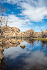 Joshua Tree National Park - Barker Dam (simone_a13) Tags: usa unitedstates california jtnp joshuatreenationalpark barkerdam water lake reflection desert highdesert geology rock