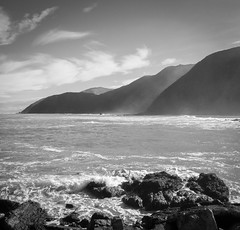 Hazy shade of winter (Will Vale) Tags: redrocks islandbay newzealand leica p9 p9plus hightide sea wellington bw huawei owhiro walk