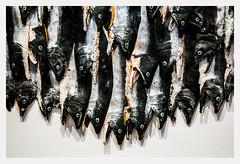 Fresque aux poissons / Fresco with fishes - Serena Carone - Musée de la Chasse / Hunting museum - Paris (christian_lemale) Tags: poisson fish serena carone serenacarone plasticienne plasticartist musée museum chasse paris france nikon d7100