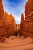 Navajo Trail - Bryce Canyon, 2018 (Dino Sokocevic) Tags: nikon tamron tamronusa usa utah utahphotographers nature landscape landscapes nikonusa nationalpark d610 ultrawide bryce canyon hoodoo