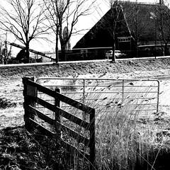 Farm and field (CloudBuster) Tags: meadow weilanden groen green countryside platteland friesland water open view uitzicht farms boederijen shadows schaduwen black white zwart wit