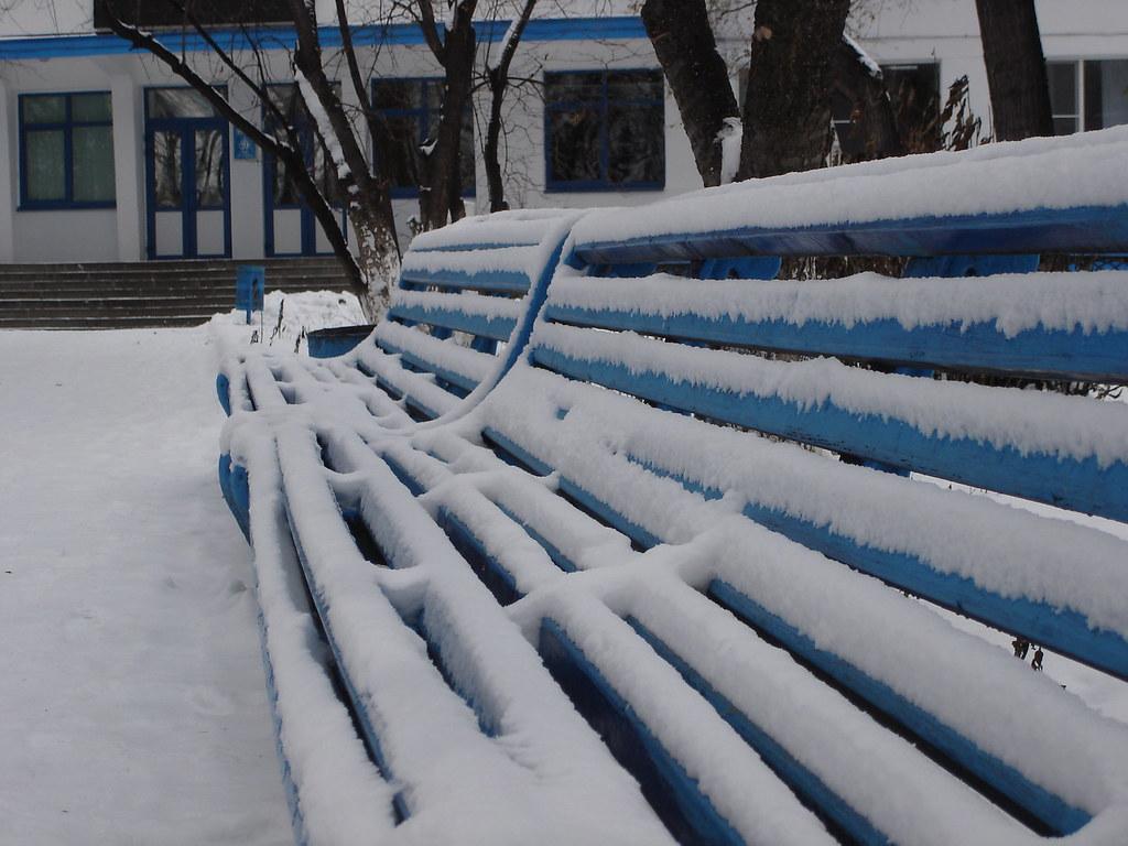 фото: Скамейка в парке Динамо