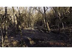 DSCF0912 (kevinredden1) Tags: hikes streambed hidden