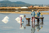 Salt field in Khanh Hoa, Vietnam (phuong.sg@gmail.com) Tags: agriculture asia background bay color crystal culture evaporation farm farmer field flake industry ingredient lagoon landscape men mine mineral morning nature nhatrang outdoor people pile pond pool reflection reflects salt salted salty scenery sea sky snow summer sunny sunset texture thailand tradition traditional travel tropical vietnam white women