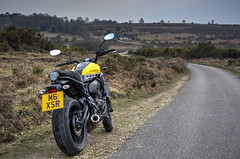 xcxsr20 (Antony Ward UK) Tags: yamaha xsr motorbike 60th anniversary kenny roberts 700 yellow ride out new forest dorset poole bournemouth