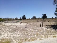 IMG-20180202-WA0010 (pastoralafrocali) Tags: africa sudáfrica