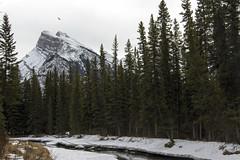 Fenland Trail (Velates) Tags: banff fenland winter canada banffnationalpark