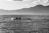 pirates (albert.aschl) Tags: bw torri sundown lake garda