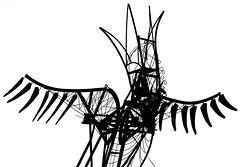 Phoenix (Hans Veuger) Tags: nederland thenetherlands amsterdam amsterdamnoord asterweg kringloop monochrome zwwt bw nikon b700 coolpix hss bird phoenix feniks nederlandvandaag recycling