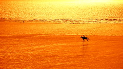 (Philippe Vieux-Jeanton) Tags: sunset horse rider beach minimalist sony18135mmoss sonya6000 landscape seascape 2018 jullouville normandie france cheval sea plage