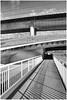 Follow the path (IBU-TT.1) Tags: stadgentbelgium rivier deleie river zwartwit blackwhite