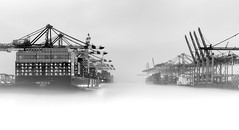 Fog on the water (fotoerdmann) Tags: kontrast canon6dmark2 fotoerdmann container hamburg torzurwelt elbe schiffe hafen blackandwhite highkey nebel fog