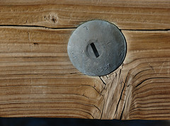 Meeting Of The Dissimilars (Old White Truck) Tags: wood grain galvanized fastener