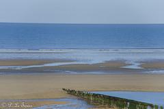 Marée basse sur la côte Normande 10 (letexierpatrick) Tags: maréebase mer beach plage sea marine sable océan normandie
