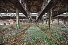 • Katedra Botaniki (Woven Eye) Tags: abandonedrepairshop voigtlander perspective vanishingpoint
