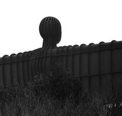 Angel Of The North - Black and White (Gilli8888) Tags: tyneandwear northtyneside northeast lamesley nikon p900 coolpix tyneyard angelofthenorth sculpture art publicart gateshead blackandwhite metal rust