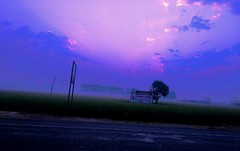 Blue Hour at Sirhind (camaee29) Tags: nature sky color blue fog sunlight sunrise yureka punjab india patiala fields trees landscape ray clouds road cool awesome cloud pink ngc nh1 highway sirhind fatehgarh sahib bhakra canal