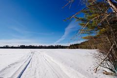 Thistledew Lake in Winter, Minnesota (Tony Webster) Tags: cook georgewashingtonstateforest minnesota thistledewlake snow snowmobiletracks trees winter unitedstates us