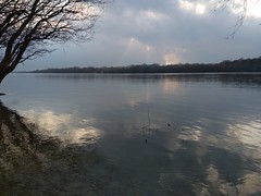 My small village 35 (MoyanSpirit) Tags: danube river reflection tree