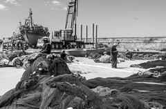 The fishing port (drroam87) Tags: marocco essaouira blackwhite port fishing nets people fisherman