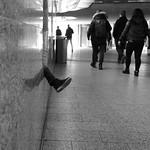 One leg rarely comes alone ... thumbnail