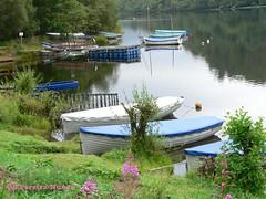 Beautiful lakes of Scotland filled with boats (Sebastiao P Nunes) Tags: lago lagoon escocia scotland loch barcos nunes snunes spnunes spereiranunes laguna panasonic lumixfz20