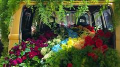 Combiful of Flowers (Theen ...) Tags: volkswagon combi van yellow flowers display melbourneflowershow theen
