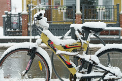 Bike (guysamsonphoto) Tags: guysamson sonyalpha6300 rokinon50mmf14 snow neige victo victoriaville