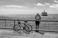 Le vélo, la rivière et le cycliste (Wal Wsg) Tags: levélo larivièreetlecyclistelevélo larivièreetlecyclistelabicicleta elrioyelciclista labicicleta bike bicicleta bicicletas bicicletta bici bikes bicis biciclettas bicicletasestacionadas bicireposando planetbike bw 7dwf 7dwfbw 7dwfthursdaysbw phwalwsg canoneosrebelt3 dia day byn blackandwhite blancoynegro rio agua water