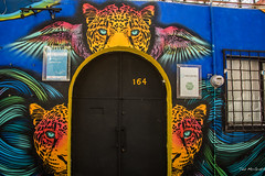2018 - Mexico City - Doors/Windows - 10 of 13 (Ted's photos - Returns 23 Jun) Tags: 2018 cdmx coyoacan cropped mexico mexicocity nikon nikond750 nikonfx tedmcgrath tedsphotos tedsphotosmexico vignetting doorway door entry entrance colorful colourful 164 calle 164callexicotencatl animal mural wallmural arch archway red redrule 5photosaday