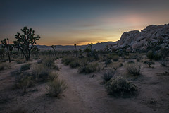 6S0A8487 (kayaker72) Tags: joshuatree joshuatreenationalpark hiddenvalley hiddenvalleypicnicarea nationalparks sunset bluehour