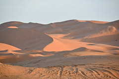 Dunes of the Sahara, Morocco 2 (meg21210) Tags: sunset dunes morocco sahara desert erfoud
