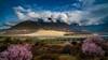林芝 佛掌沙丘 (sunnyha) Tags: nyingchi tibet linzhi chinese china chinalandscape sony sunnyha day outdoors sky skyblue skyline mountain mount color colour colours cloud clouds blueskyandwhitecloud sand dune plant peachblossom landscape landschap buddhapalmlikesanddune photographier photograph photographer flowers nature 中国 中國 林芝 佛掌沙丘 西藏 摄影 写真 中國風景 nopeople a7rll