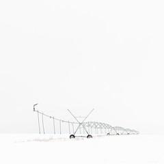(matthiaswerner) Tags: schnee snow landscape field feld sachsen sachsenanhalt saxony winter white