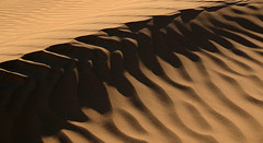 Lines in the Sand (photo61guy) Tags: nikond7000 ca california deathvalley deathvalleynationalpark deathvalleynatlpark mesquitedunes sand windblown windeffects nature abstractart abstractnature abstractlandscape morninglight