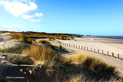 Breskens 2018 (Fabke.be) Tags: zeeland northsea zee sea water ocean sand beach breksens nederland netherlands dunes fabrice henneghien explore inexplore life canon popular flickr fabke people canon7d photography belgian view
