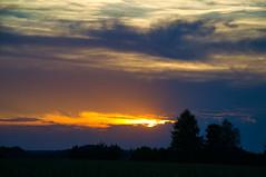 Summer sunset (echumachenco) Tags: sunset sky clouds tree outdoor summer august evening freilassing berchtesgadenerland bavaria bayern germany deutschland nikond3100