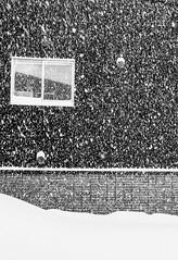 Urban snow (Peter & Olga) Tags: 2018 biei fujifilm japan olgabaldock day3 winter building snowing window almostabstract photographytour
