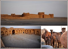 caravansérail abandonné ! (Save planet Earth !) Tags: iran caravansérail nikon amcc voyage travel collage chameau animal