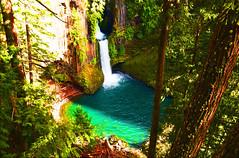 Toketee Fall :Oregon (shishirmishra1) Tags: naturephotography travel sceneic waterfall oregon portland fantasticnature water hike cityscape nature green