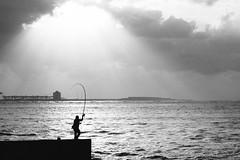 fishing (Philip@Tamsui) Tags: sony a7ii sonnar90mm sonnar seaside 台北 新北市 台灣 sunset tamsui 淡水 日落 夕陽 ocean silhouette 剪影 bw blackandwhite monochrome 黑白