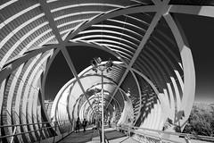 geometría Perrault (martineugenio) Tags: brigde puente metal bw estructura líneas lines arganzuela perrault people sky cielo city ciudad madrid españa spain downtown europa europ