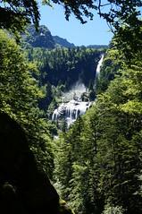 Chute d'eau (Guibou7) Tags: montagne france chute forêt vert cascade pyrénées